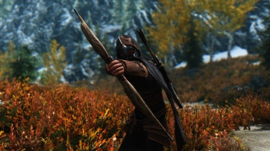 Bosmer outfit