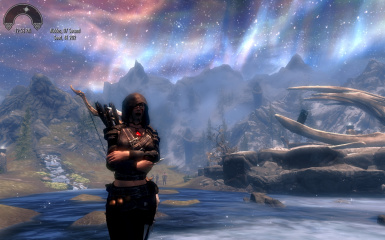 Irvinna a master thief in Sovngarde