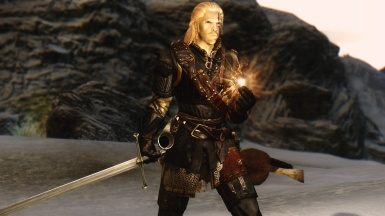 The real witcher 1