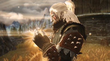 The Witcher wild hunt collection 1