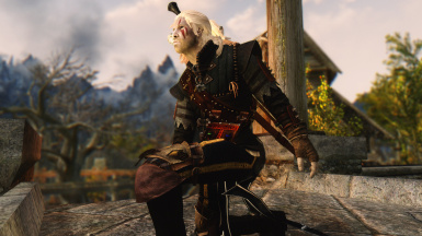 The Witcher wild hunt collection 2