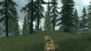 Skyrim Total Immersion without ENBs