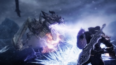Elemental Dragon vs Dragonborn II
