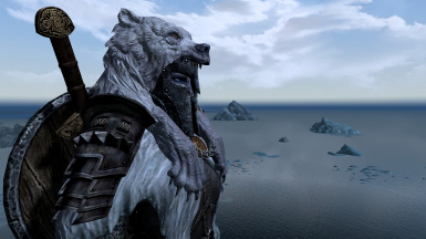 A Nord stares out to Sea