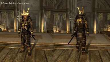 Dovahkiin Armour