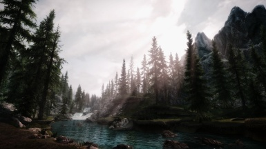 River in the Wood