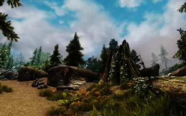 The wilds enb TPC