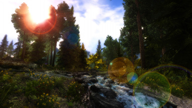 Water and Forest 2