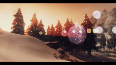 Snow Forest Evening