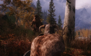 Yogi Bear Sighting in Skyrim