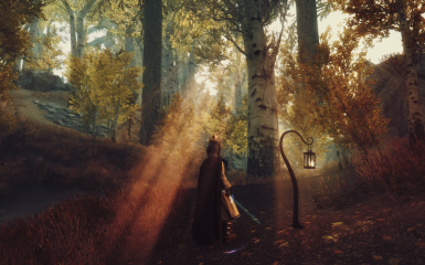 Grim and Somber Enchanted ENB in The Rift