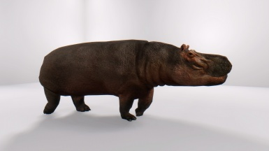 Skinwalker21's Hippo With Air ENB 1