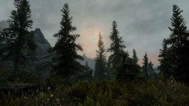 Soothing Lanscape
