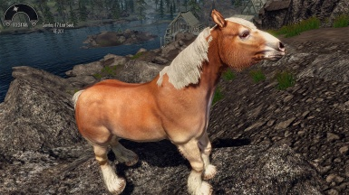 WIP - HD horses texture test