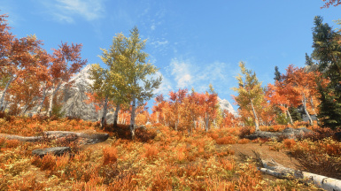 Realistic Aspen Trees with NLA and Custom Sweetfx