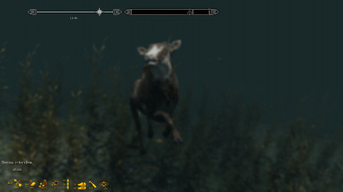 The water goat