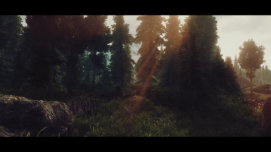 Scenes from Skyrim