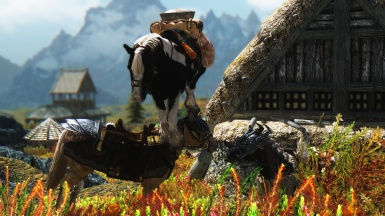 The Horses of Skyrim