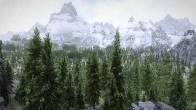 All mods installed dyndolod for lods