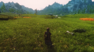 MY GRASS MOD - TEST 4