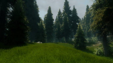 DAT GRASS ENB test