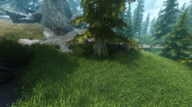 Dat Grass and Dat ENB