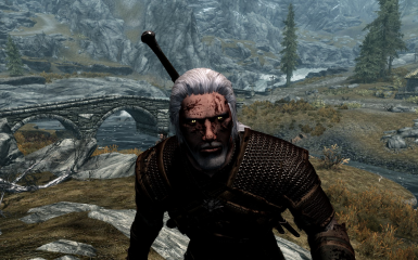 Witcher Signs in no actual order and one death march abillity