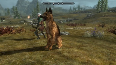 Judah using wrig675 costum german shepherd skin