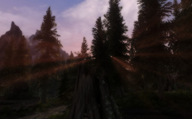 The Trees 4