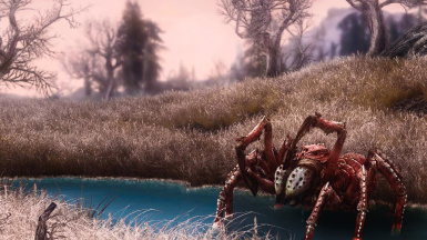Shelob In Skyrim