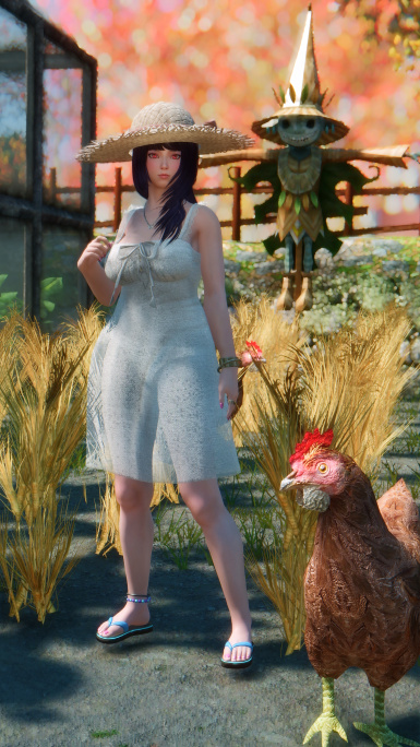 Shoot with Chicken