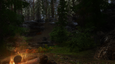 Take a moment to setup camp and rest Dragonborn