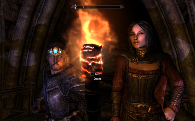 My breton paladin and Serana