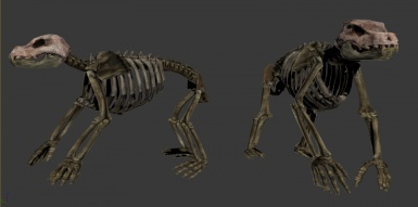 Real Skinned Animals Mod - Bear Skeleton Proto- NEED TEXTURE ARTISTS