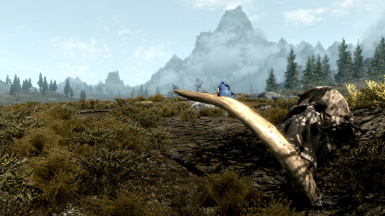 The beautiful Skyrim