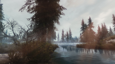 Morthal swamps 1