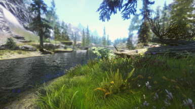 Yet another Riverwood view