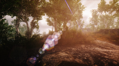 Kinematic ENB Southern Lights 6