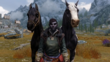 Horse Breeds And Tack WIP 1