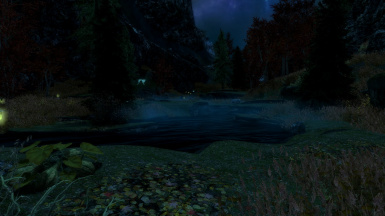 Night time in the Reach