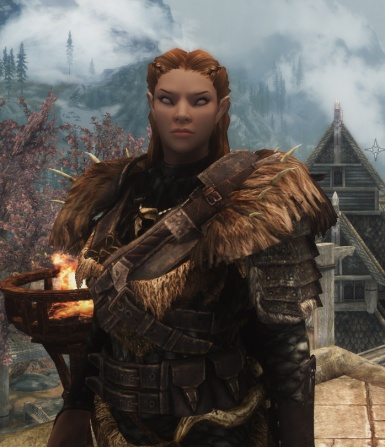 Portrait of a Bosmer