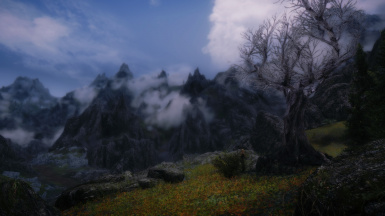 Near Markarth