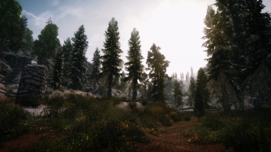 Somewhere in northwest Skyrim