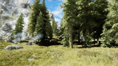 Forest environments with Tk ENB Extented
