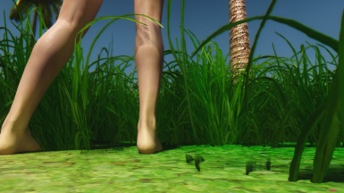 Grass and Legs