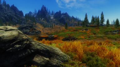 I switched from RealVision ENB to Grim and Somber ENB