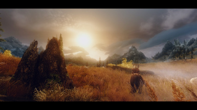 Custom ENB Pre-Release Collection