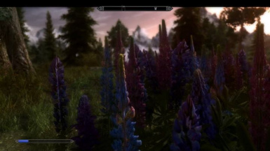 Flowers of Skyrim