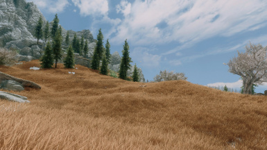 Grass and Trees