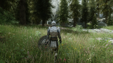 Forest and ENB